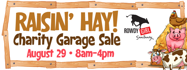 RGS-Raisin-Hay-Charity-Garage-Sale-Web