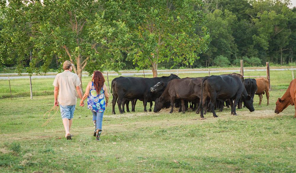 Renee-Tommy-Herd
