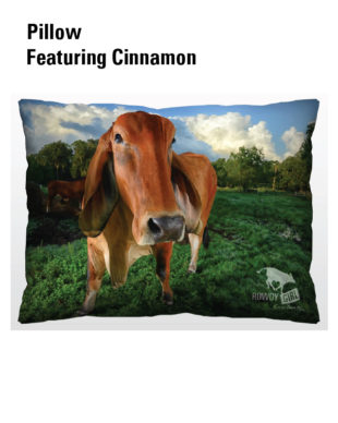 Pillow-Cinnamon