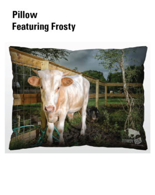 Pillow-Frosty