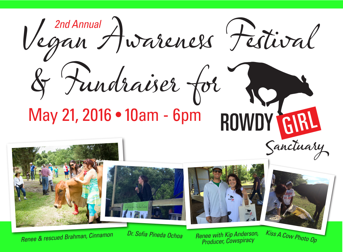 Rowdy-Girl-Fundraiser-Web-Site-Image-2